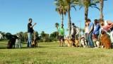 אילוף כלבים בקבוצות